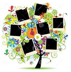 album-de-famille--floral
