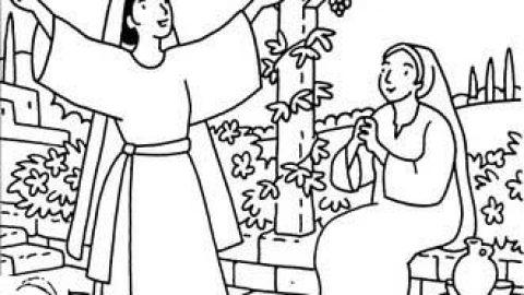 Marie, associée à Jésus